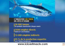 L'industrie du thon en Côte d'Ivoire