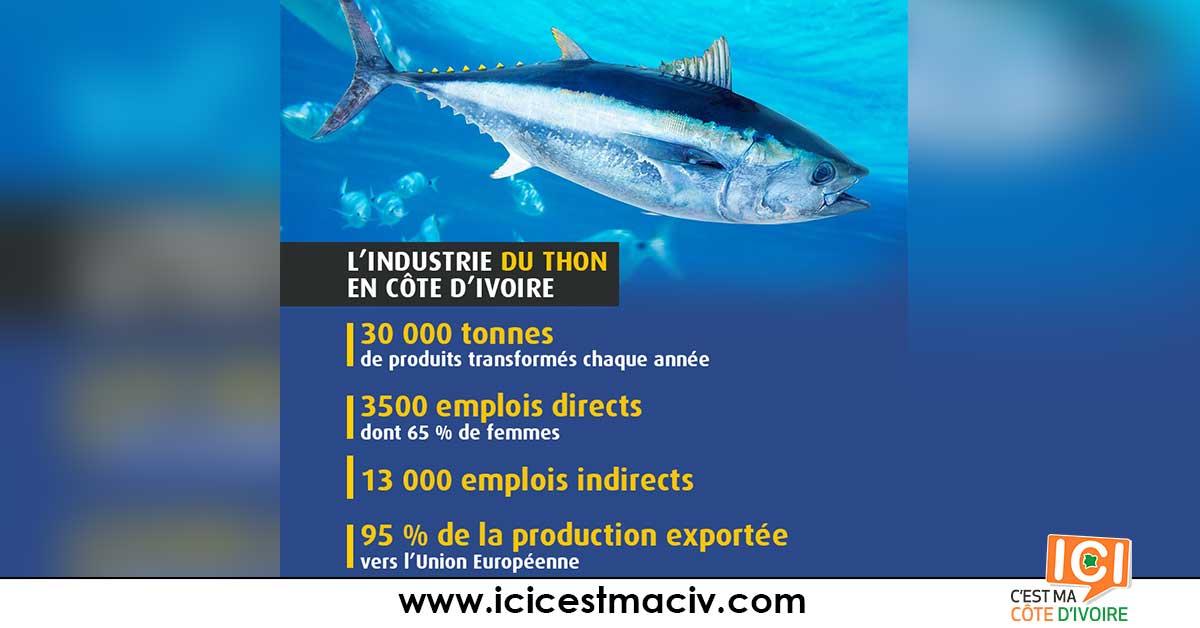 thon-en-côte-d'ivoire